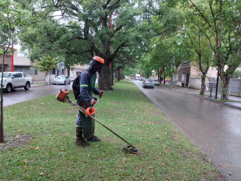 El Municipio continúa con trabajos de desmalezamiento