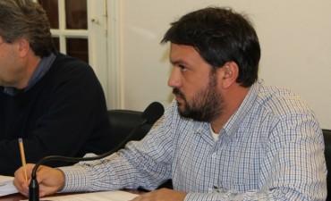 Diaz Patrón: El senador debería frenar los tarifazos de la EPE