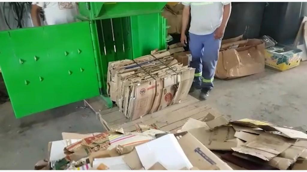 Cañada Sustentable: el Municipio fortalece acciones en cuidado del medio ambiente