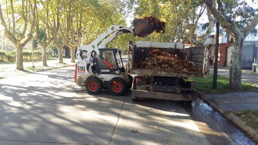 El Municipio intensifica trabajos de higiene urbana