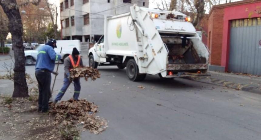 El Municipio refuerza trabajos de higiene urbana