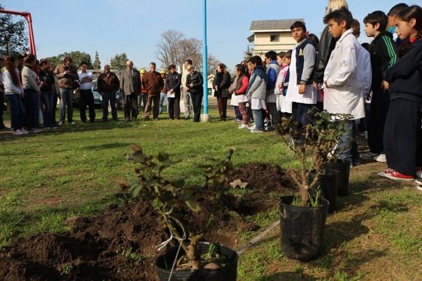 Municipio y Escuelas plantaron árboles en plaza de la Vida