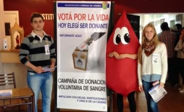 Campaña Votá por la Vida