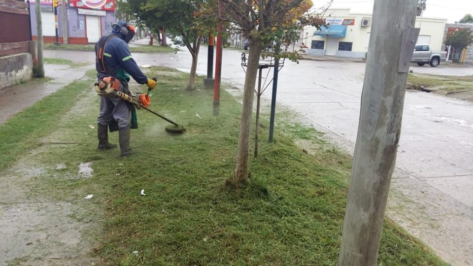 El Municipio realiza trabajos de desmalezamiento