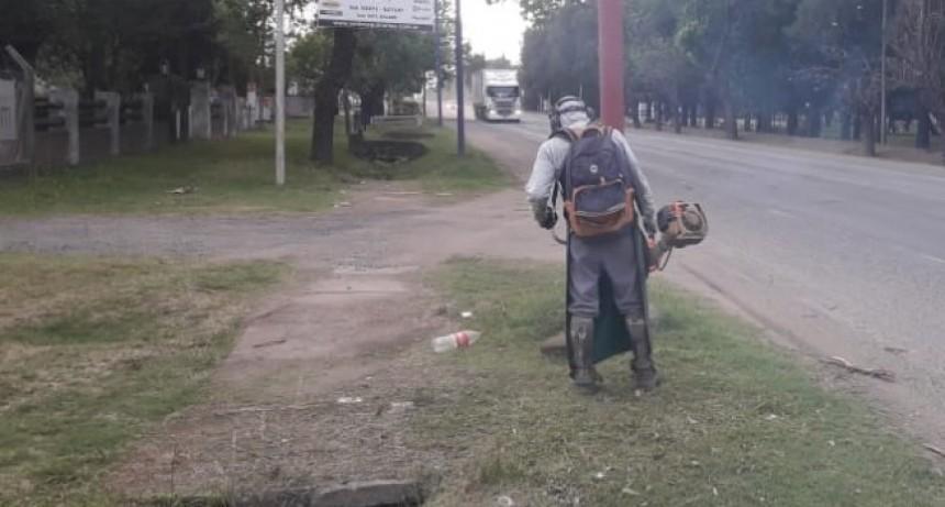 El Municipio refuerza trabajos de desmalezamiento