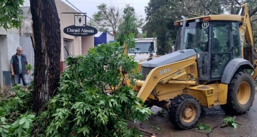 Intervenciones del Municipio tras las lluvias