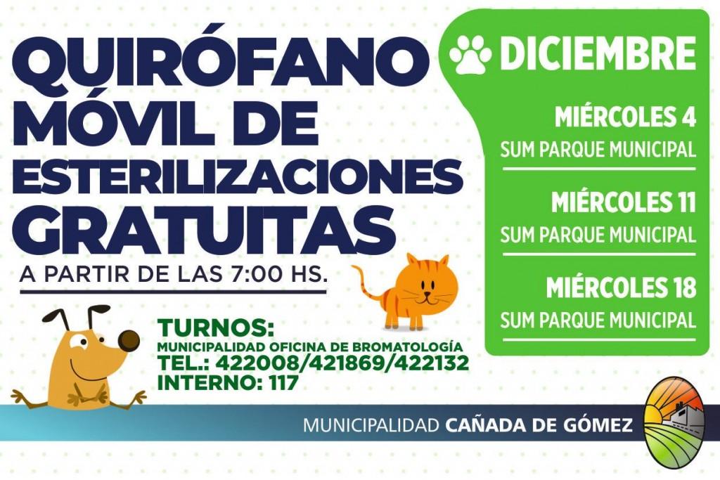 Quirofano Móvil de Esterilizaciones de perros y gatos